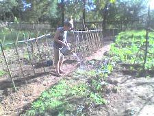 Si es necesario ¡Electrifiquemos la cerca!