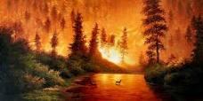 Destellito: El Incendio Forestal