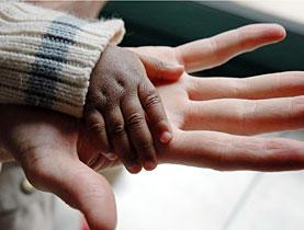 El Poder de la Adopción
