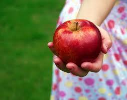 Frutos de Provecho