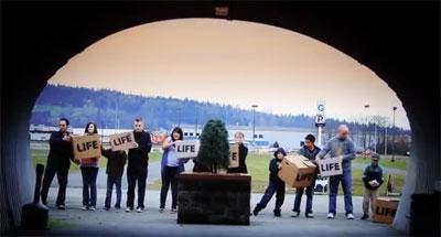 Video: Caja de Vida