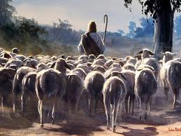 ¡Atención Pastoral!