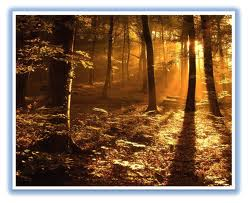 Leyenda de los tres árboles