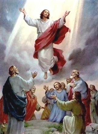 ¿Qué hace Jesús en el cielo?