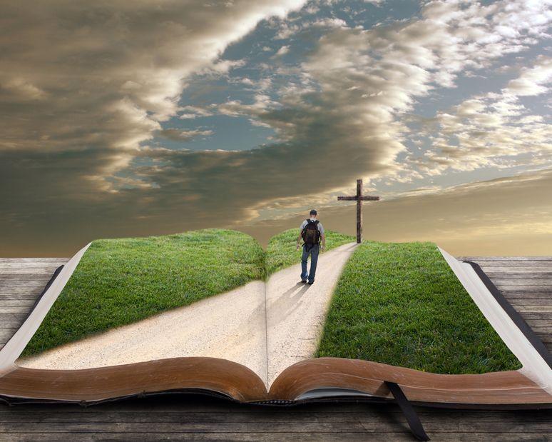El Camino de salvación