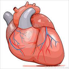 Reflexión: El corazón humano