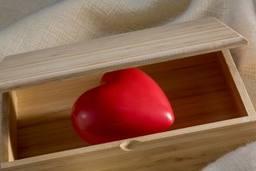 Video: El Tesoro de mi corazón