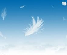 Reflexión: Como plumas al viento