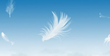 Como plumas al viento