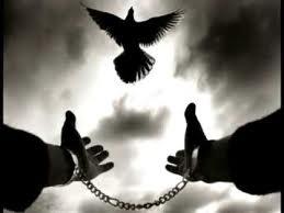 Puedes ser libre