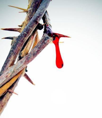 El Hijo de Dios – Devocionales de Semana Santa